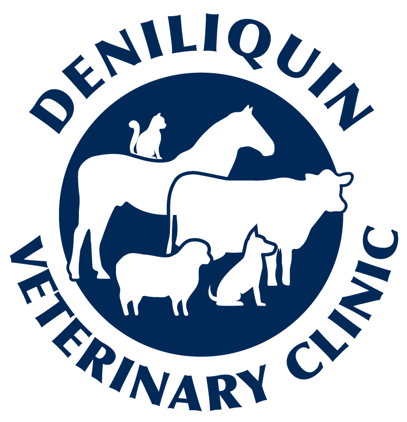 Deniliquin Veterinary Clinic