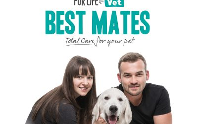 Best Mates – Membership has its benefits!